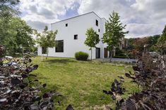 CHL4343_retouched Lava, Sidewalk, Plants, Side Walkway, Walkway, Plant, Pallet, Walkways, Planets