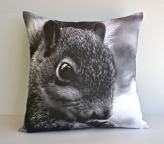 Animal pillow. This black and white photograph of a baby squirrel would add a little bit of woodland whimsy to your lounge room or bedroom. Great