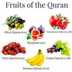 Buah yang tercantum di Al-Qur'an Islam Muslim, Islam Quran, Islam Beliefs, Islam Religion, True Religion, Islamic Teachings, Islamic Quotes, Islamic Dua, Islamic Messages
