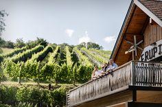 Weingut Pfeifer, St. Anna am Aigen Sauvignon Blanc, Garden Bridge, Anna, Outdoor Structures, Wine Festival, One Glass Of Wine, Perfect Place, Fireworks, Exotic