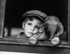 oh my gaw. squee. way too much cuteness in one picture!! the baby elephant, the cute, pensive boy ahh.