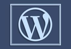 Guide to Your First WordPress Framework
