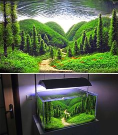 Extremely detailed aquarium...