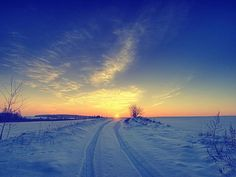 Winter in Sombor, Serbia