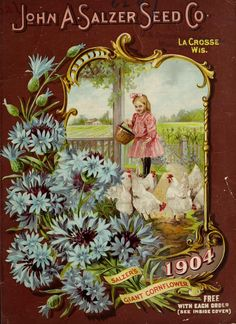 1904 - Salzer's1904 [catalogue] / - Biodiversity Heritage Library