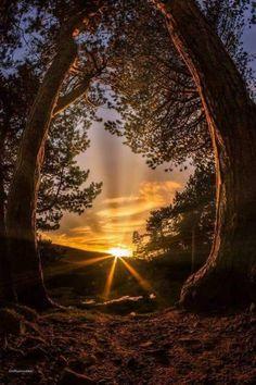 Anuncia un buena noche – Beste Winterbilder Beautiful Landscapes, Beautiful Images, Beautiful Scenery, Nature Pictures, Cool Pictures, Landscape Photography, Nature Photography, Beautiful Sunrise, Nature Wallpaper