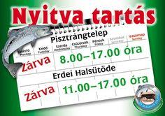 Lillafüredi pisztrángtelep - Honlap Thursday, Wednesday, Oras, Summertime, Sunday, Domingo
