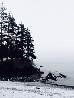 See 16 photos and 1 tip from 125 visitors to City of Kodiak. Kodiak Alaska, Deadliest Catch, Mother Nature, City, Beach, Water, Outdoor, Gripe Water, Outdoors