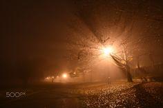 Misty evening III - null