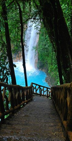 La Fortuna ~ Rio Celeste ~ Waterfall near Arenal Volcano, Costa Rica, More at  > http://www.arenal.net/la-fortuna-waterfall-costa-rica.htm