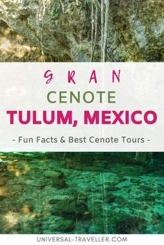 Find out why you really have to visit Gran Cenote Tulum and why it is on every list of Best Cenotes Tulum. We will tell you how to get to the Cenote and share with you the best time to visit the Gran Cenote Tulum. Cenotes Tulum, Hotel Sites, Tulum Ruins, Leading Hotels, Tours, Travel Destinations, Travel Tips, Mexico Travel, Wanderlust Travel