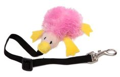 Marshall Bungee Ferret Toy, Assorted Colors, http://www.amazon.com/dp/B0002DJM40/ref=cm_sw_r_pi_s_awdm_sspDxb7KDRVFP