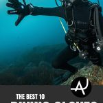 Top 10 Best Dive Gloves of the Year  The Ultimate Guide