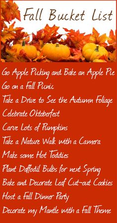 Fall Bucket List - love everything minus Oktoberfest. Harvest Time, Fall Harvest, Autumn Fall, Autumn Leaves, What A Nice Day, Image Deco, Fall Picnic, Summer Picnic, Summer Bucket