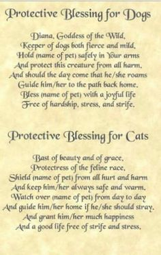 Blessing for Dogs and Cats - Pinned by The Mystic's Emporium on Etsy