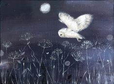 Barn owl. Love Lucy's work- delicate but full of movement.