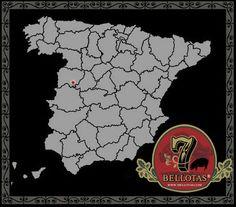 jamones de bellota marca 7 Bellotas puro iberico de bellota