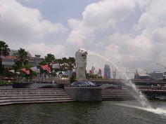 Boat Tour (Mar Lion)
