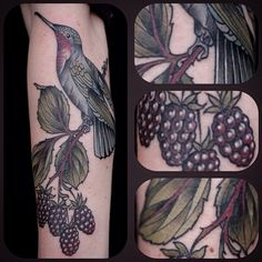 #hummingbird with #blackberry by #kirstenholliday @onholliday #wonderlandpdx #wonderlandtattoo