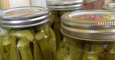 Canning pickled Okra... Ball Blue Book has it perfect! - Canning Homemade!