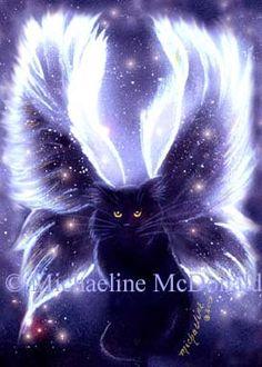 A Fairy Cat