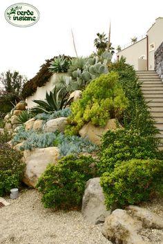 Giardino+mediterraneo.JPG (427×640)
