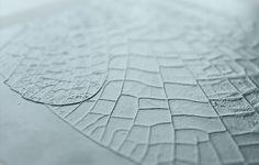 2.5D printed artwork - detail insect Design Jannie Schmitz and Daan de Haan