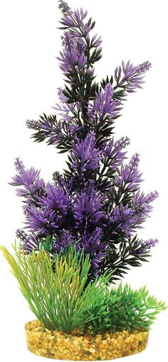 Blue Ribbon Pet Products-Colorburst Florals Brush Plant Cluster- Black-purple
