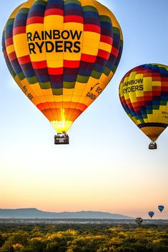 If you want to fly, give up everything that weighs you down. - Buddha Air Balloon Rides, Hot Air Balloon, Places To See, Phoenix, Cool Photos, Buddha, Arizona, Balloons, Mexico