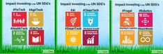 This is the first post in a series on impact investing in the UN's Global or Sustainable Development Goals (SDG's). Un Global Goals, Sustainable Development, Writing A Book, Frugal, Infographic, Finance, Investing, Future, Swimming
