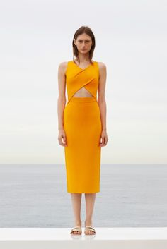 http://www.vogue.com/fashion-shows/resort-2016/dion-lee/slideshow/collection