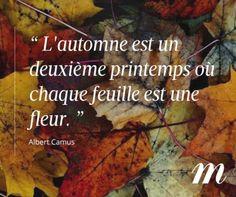 """""""L'automne est un deuxième printemps où chaque feuille est une fleur."""" Albert Camus"""