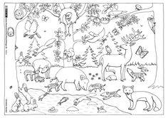 Nature forest autumn animals Coloring page kindergarten Animals That Hibernate, Tame Animals, Wild Animals, Autumn Animals, Forest Animals, National Geographic Animals, Animal Worksheets, Animal Coloring Pages, Free Printable Coloring Pages