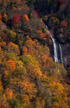 Glassmine Falls, Blue Ridge Parkway, North Carolina; photo by Matthew Paulson