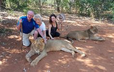 Walking with Lions is one of the most exhilarating experiences of a lifetime! It's right up there with skydiving and hot air ballooning. Skydiving, African Animals, Exotic Pets, Lions, Kangaroo, Walking, Baby Bjorn, Lion, Exotic Animals