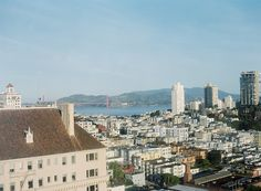 A San Francisco Brunch Wedding for the Books.
