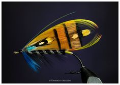 Black Ranger 5/0, first attempt...my second salmon fly! By Umberto Oreglini