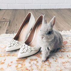 LC Lauren Conrad Petal High Heels   Available at Kohl's