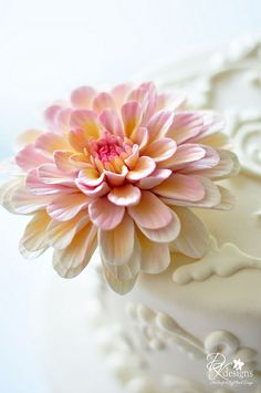 dustyrosedahlia5 | Flickr - Photo Sharing!