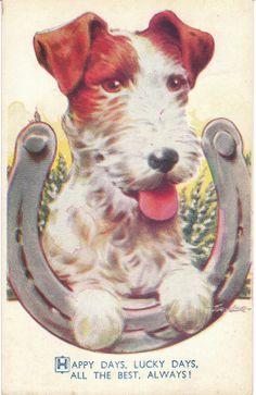 vintage dog pictures | Vintage Dog Postcards at Birdhouse Books