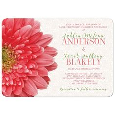Coral gerbera daisy wedding invitation. Elegant and sophisticated, this coral gerber daisy wedding invitation has a subtle lace background. Colors are coral, green, and white. Perfect for a spring or summer wedding.