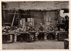 Tea picking in Canton - 1870. Vintage Chinese photography and history