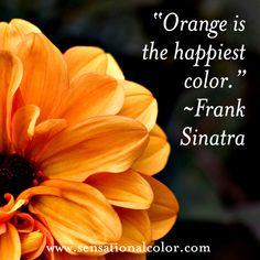 """""""Orange is the happiest color"""" ~ Frank Sinatra, American singer and film actor, 1915-1998 #color #quote"""