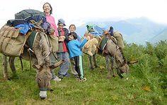 Panoram'âne - randonnées avec ânes dans les Pyrénées