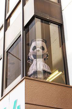 Zettai Ryoiki / 絶対領域 Tokyo-to, Chiyoda-ku, Soto Kanda 3-2-13, Hashitzume Building, 2nd floor