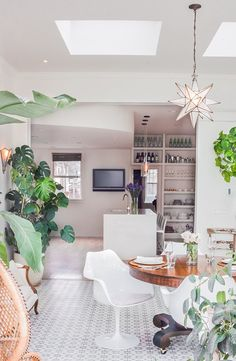 white home with green plants