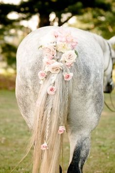Wedding pony. Horsey butt! Horse tail with roses woven in. Very sweet.