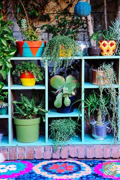 The use of succulents is an outdoor decor trend we're seeing in our most recent Patio Style Challenge series. Here are our favorite uses of succulents. Garden Deco, Bohemian Patio, Aqua Paint, Plant Shelves, Boho Decor, Bohemian Decorating, Garden Inspiration, House Plants, Decoration