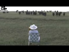 THIS IS AMAZING!! GUY PLAYING TROMBONE IN AN OPEN FIELD.. WATCH WHAT HAPPENS! - YouTube