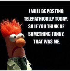Beaker the Muppett